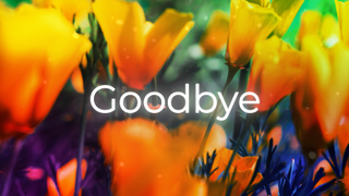 HMD Goodbye
