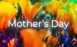 HMD Mother's Day (97708)