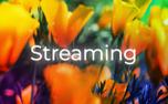 HMD Streaming (97709)