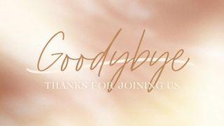 Blush Shimmer : Goodbye