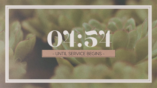 Succulents Countdown