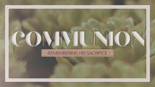 Succulents Communion