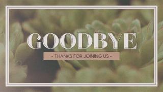 Succulents Goodbye