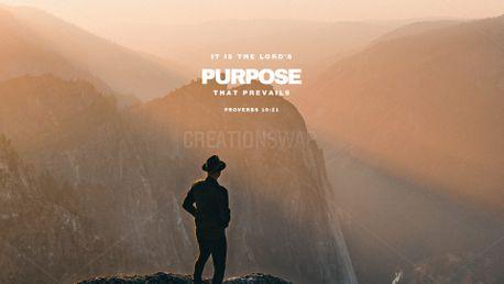 Lord's purpose (97859)