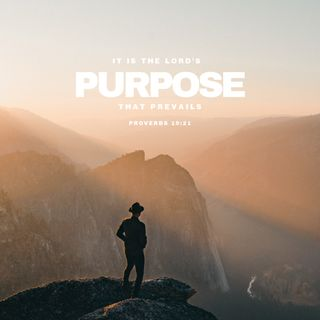 Lord's purpose