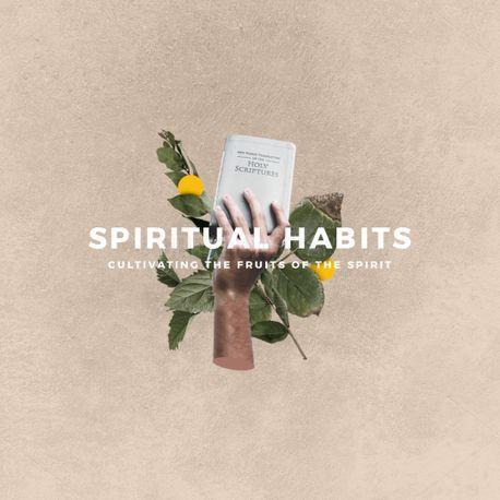 Spiritual Habits (97862)