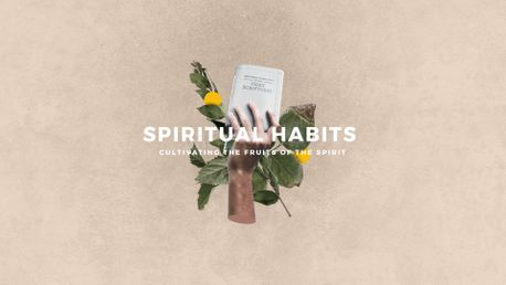 Spiritual Habits (97863)