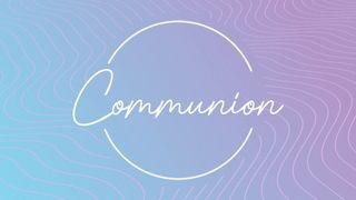 Lavender Waves : Communion