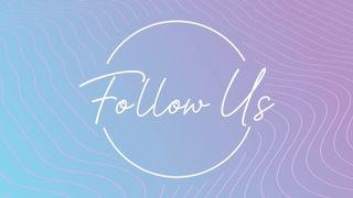 Lavender Waves : Follow Us