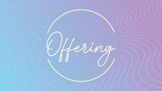 Lavender Waves : Offering