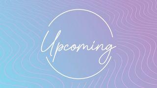 Lavender Waves : Upcoming