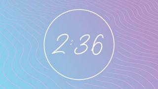 Lavender Waves : Countdown