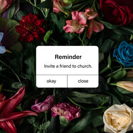 Reminder (97945)