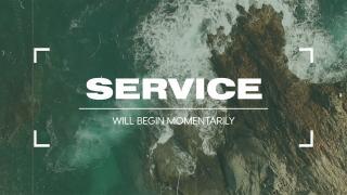 Vintage Ocean Reel // Service