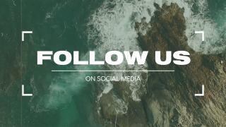 Vintage Ocean Reel / Follow Us