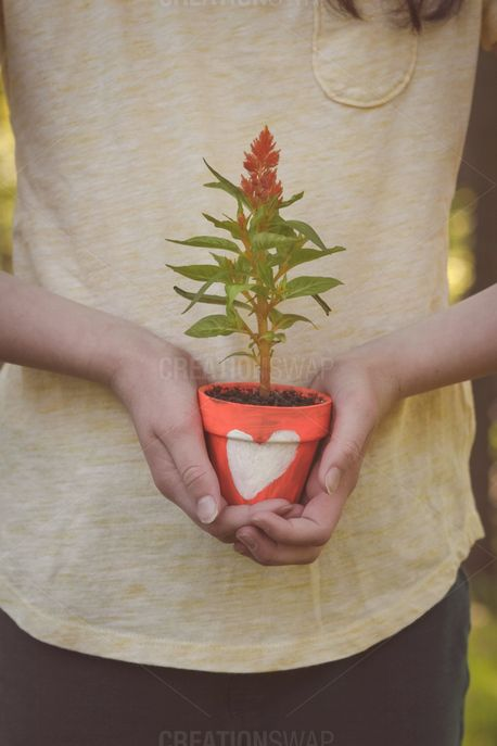 Flower Pot With Heart (98062)