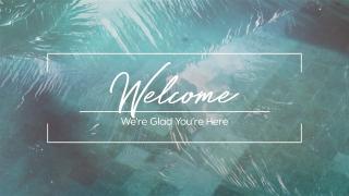 Pool Palms Welcome