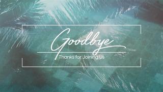 Pool Palms Goodbye