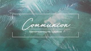 Pool Palms Communion