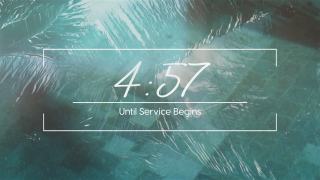 Pool Palms Countdown