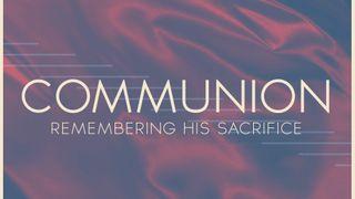 Dedicated Blue : Communion