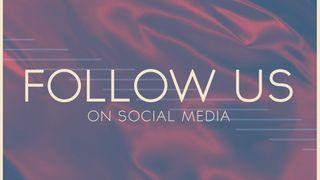 Dedicated Blue : Follow Us