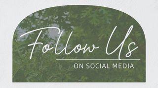 Oak Grove : Follow Us