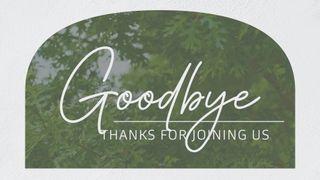Oak Grove : Goodbye