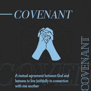 Theology Covenant Social