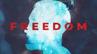 Freedom Vol Three Title Motion