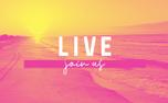 Summer Beaches Motion Titles (98640)