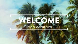 Summer Palms Welcome Loop