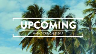 Summer Palms Upcoming