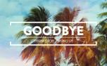 Summer Palms Goodbye (99099)