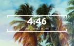 Summer Palms Countdown (99103)