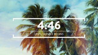 Summer Palms Countdown