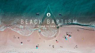 Beach Baptism PSD included