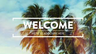 Summer Palms Welcome