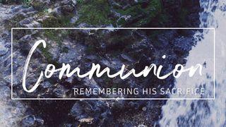 Rocky Falls : Communion