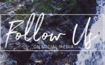 Rocky Falls : Follow Us (99225)
