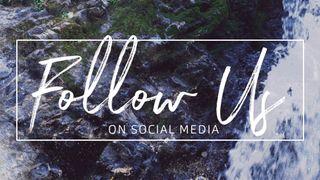 Rocky Falls : Follow Us