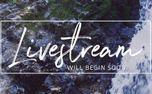 Rocky Falls : Livestream (99228)