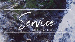 Rocky Falls : Service