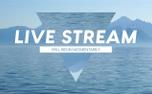Mountain Lake Live Stream (99321)