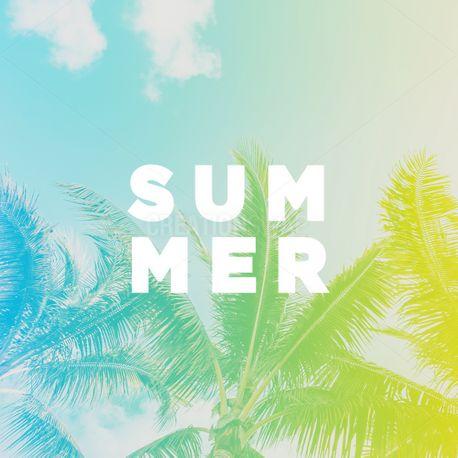 Summer (99403)
