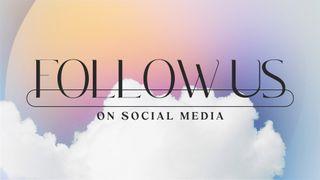 Sky Gradient : Follow Us