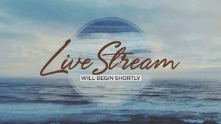 Ocean Live Stream Slide