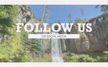 Vintage Waterfall Social (99598)