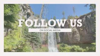 Vintage Waterfall Social