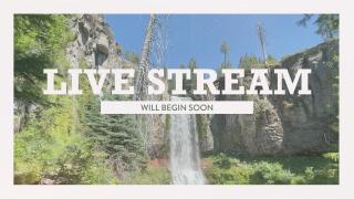 Vintage Waterfall Live Stream
